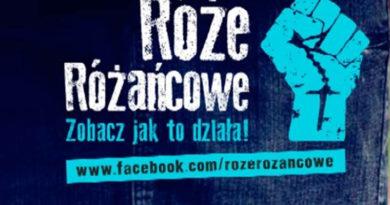 roze_rozancowe_2016