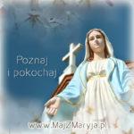 maj_z_maryja_2017_kwadrat