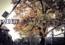 Harmęże: Spektakl w 73. rocznicę wyzwolenia KL Auschwitz-Birkenau