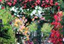 Mazowsze: Pamiętajmy o ogrodach…