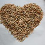Do odsłuchania: Woreczek ryżu – dla ubogich z Kenii i Ekwadoru